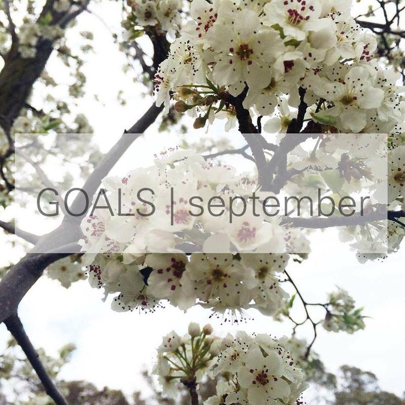 GOALS_SEPTEMBER_2015