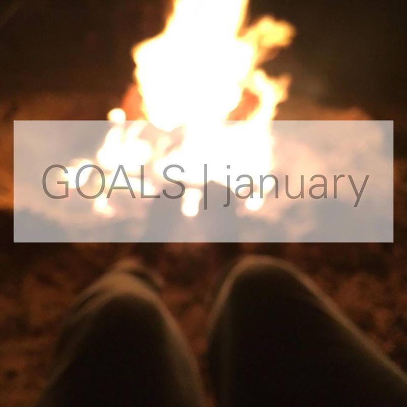 GOALS_JANUARY_2016